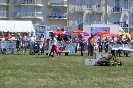 expo Dieppe 2008