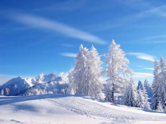 Fond D'écran De Paysages D'hiver Gratuit. paysage tout blanc de neige