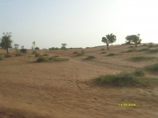 Dune de sable à Yakouta