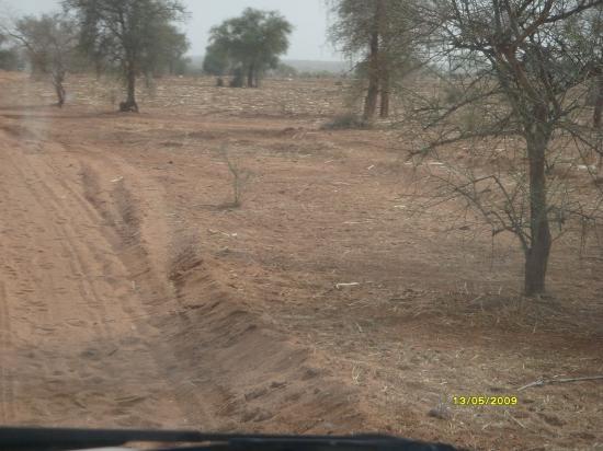 La piste Arbinda-Sikiré