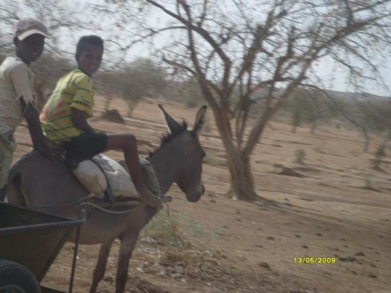On voyage à dos d'âne