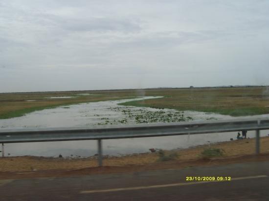 Il vient de pleuvoir au Sahel.