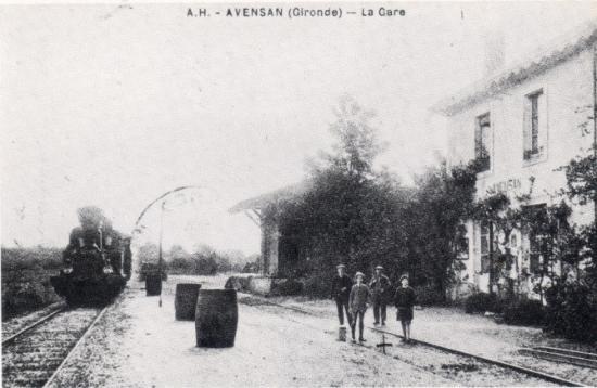 Avensan_2
