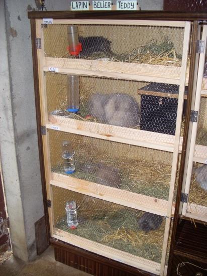 Installations for Clapier lapin fait maison