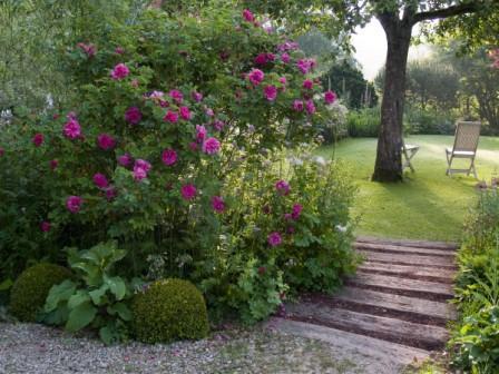 L 39 Ancien Jardin