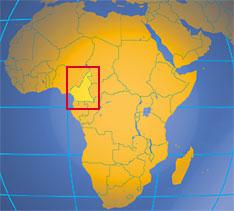 zoologie cameroun chasse au python braconnage braconnier technique de chasse python reticulé G'bayas camerounais chasseur de serpent documentaire