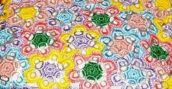 fleurs-languettes
