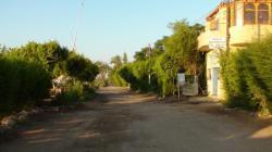 Le quartier de Gezira ou El Gezireh ou encore Ramala.