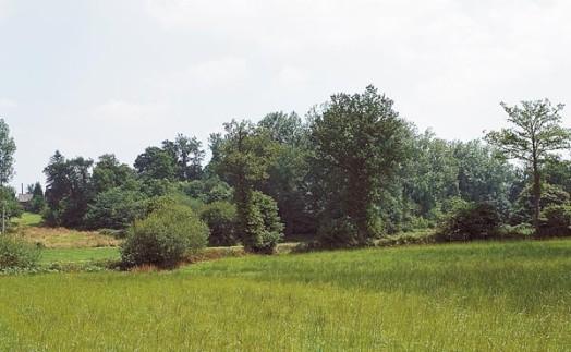 Buttes du Châtel Marcillé-R