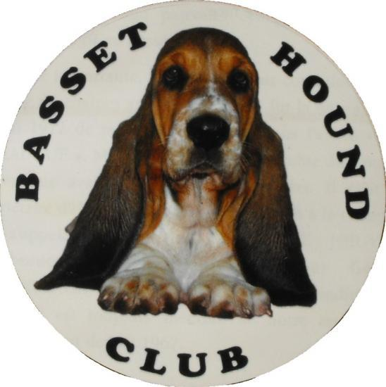 club de race basset hound