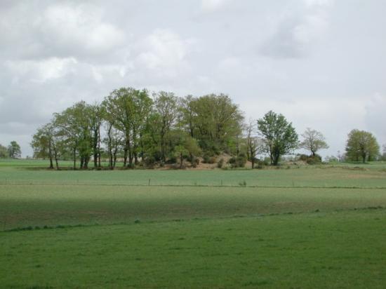 motte Saint-Gonlay