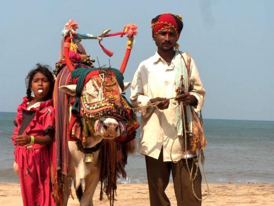 Inde Goa @hellomisterd.com