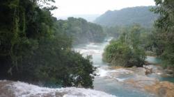 Agua Azul - Vista sobre las cascadas