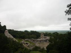 Palenque - Vista sobre el Palacio
