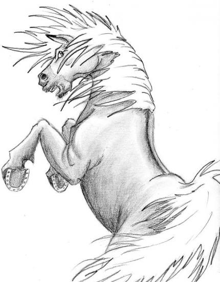 Dessins animaux - Coloriage cheval qui se cabre ...