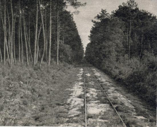 La voie entre Sabres et Marquèze