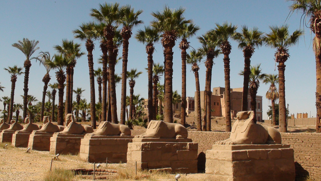 Dromos du temple de Louxor