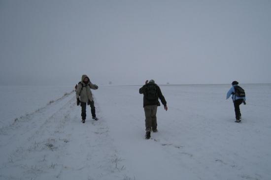 Bataille de neige encore