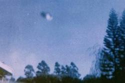 29 mai 1973 Natal, Afrique du Sud