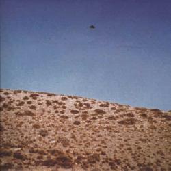 18 Févr.1975 Ponta Cuevas, Chubut, Argentine