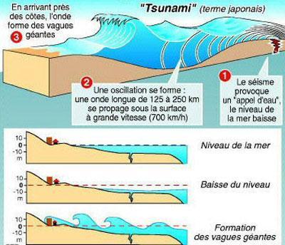 le tsunami de 2004 un emballement m diatique cassandria 39 s blog. Black Bedroom Furniture Sets. Home Design Ideas
