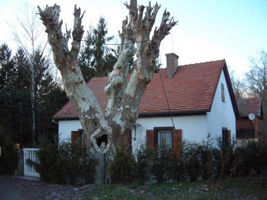 Maison du Cantonnier du Rhin