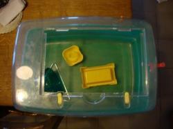 Cages en plexi pour Hamsters ou Souris + Cage Aquarium + Accessoires DSC01906
