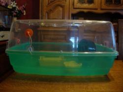 Cages en plexi pour Hamsters ou Souris + Cage Aquarium + Accessoires DSC01907