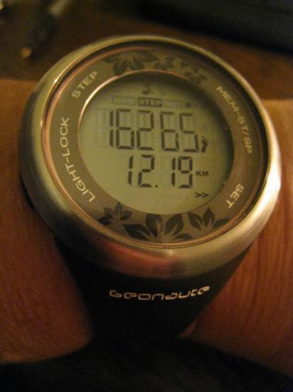 16 265 pas et 12,19 km