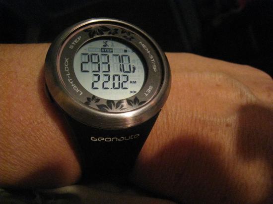 29 370 pas et 22,02 km