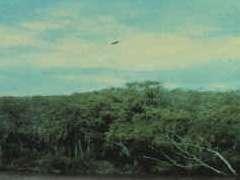 6 Janvier 1978 Entre Rios, Argentine