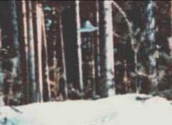 16 Mars 1979 Suonenjoki, Finlande