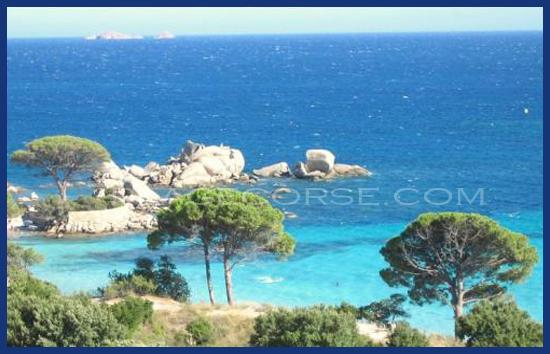 Location en Corse