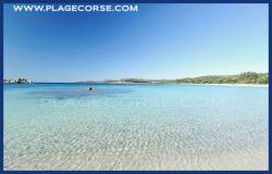 palombaggia sud Corsica
