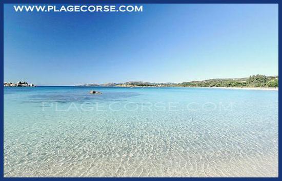 corsica porto vecchio spiaggie