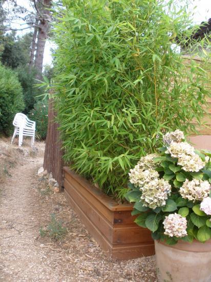 Bassin en bois pour jardin nanterre maison design for Piscine coque polyester pau