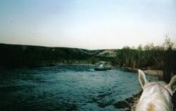 14 Juin 2005 Camp Verde, Arizona, Usa