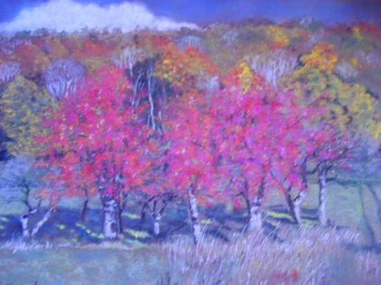 Trois cerisiers aux couleurs de l'automne
