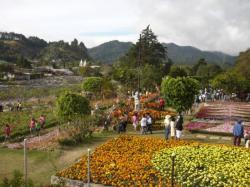 Boquete - Feria de las flores y del cafe