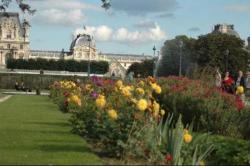 les villes comme Paris présentent de nombreux espaces verts