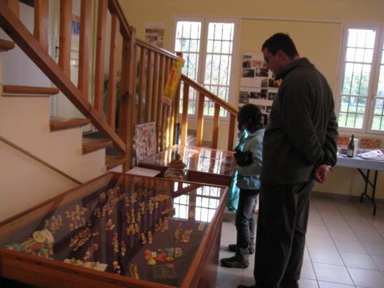 Vitrine de l'exposition de fèves à Commeny