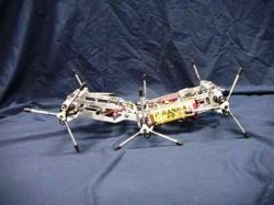 Le robot Whegs
