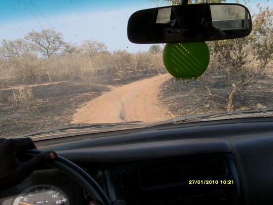La piste, ici les feux de brousse.