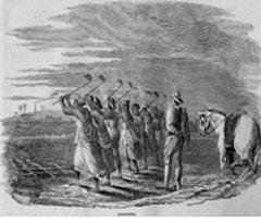 Travail des esclaves dans les champs