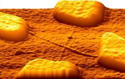 nanotube de carbone