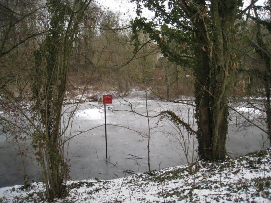 zone de lagunage
