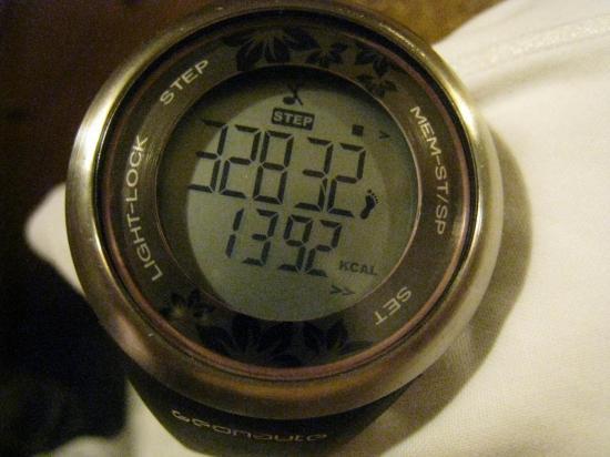 32832 pas et 1392 calories brûlés