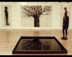 """Instalación """"Quién me habita!"""", museo del Chopo, México DF, """"Espejo de Agua"""", """"Dibujos Gigantes"""", talla en madera 180x60 x40cms, 2004."""