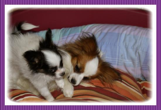 Mimi et EVER