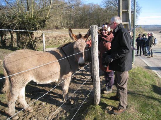 L'âne, Paula et Jean